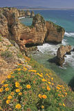 Seaside cliffs, Algarve, Portugal Stock Images