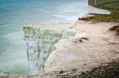 Seaside cliffs. Beautiful landscape in the summer. Royalty Free Stock Images