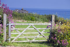 Seaside in Cornwall, Uk. Gate with flowers at the seaside in Cornwall, Uk Stock Image