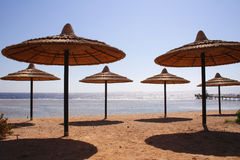 Seaside - Egypt, Sinai Royalty Free Stock Image