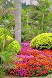 The seaside Gardens Stock Photos