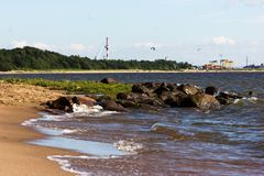 The gulf of finland. Seaside of the gulf of finland at summer sunny day Royalty Free Stock Photos