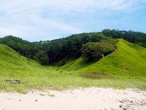 Seaside hill coast landscape. Country landscape with hill on the sea coast against blue sky Stock Photo