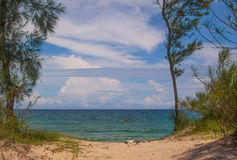 Seaside landscape with pine trees. Lonely traditional vietnamese boat and cloudy blue sky in Vietnam Stock Photos