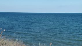 Seaside. Long 3 shots, with the seaside coast panorama and horizon line, a slight long zoom out, until the dried brown grass ofwilderness apeear. Bright blue sky stock video footage
