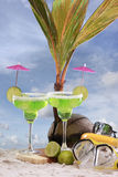 Seaside margaritas stock images