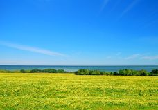 Seaside Meadow Stock Photography