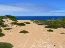 Seaside of N.P. Nullarbor. Royalty Free Stock Photography