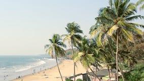 Seaside panorama view with palm. Seaside panorama viewwith palm trees stock video footage