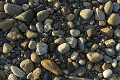 Seaside pebble texture image, from the west coast of Scotland. royalty free stock photo