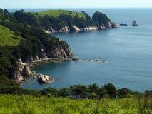 Seaside pine coast with coves. Seaside landscape with pine tree on the coast with coves bay Stock Photos