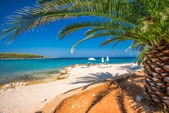Seaside promenade on Brac island with palm trees and turquoise clear ocean water, Supetar, Brac, Croatia.  stock photos