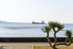 Seaside promenade, seagulls and a large ship in the sea Stock Photos