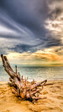 Seaside before rain. The mixed tone sky before rain Stock Photos