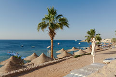 Seaside of Red sea Stock Photos