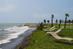 Seaside resort, chaise longue, black sea, palm Royalty Free Stock Photo