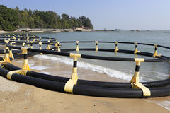 Seaside rubber swimming equipment Royalty Free Stock Image