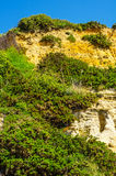 Seaside sandstone hillside covered with grass and bushes, geolog Royalty Free Stock Images