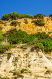 Seaside sandstone hillside covered with grass and bushes, geolog Stock Photos