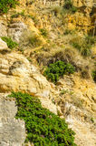 Seaside sandstone hillside covered with grass and bushes, geolog Royalty Free Stock Photo