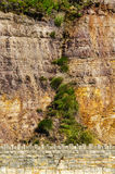 Seaside sandstone hillside covered with grass and bushes, geolog Stock Image