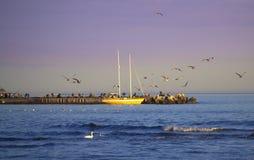 Seaside Stock Image