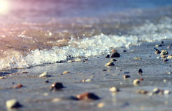 Seaside. Sea water, beach pebbles Royalty Free Stock Photos