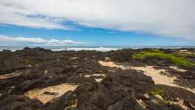 Volcano rocks in Hawaii. In the seaside, there are many black volcano rocks in Hawaii stock photos