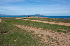 Seaside view on a sunny spring day. In north Mallorca, Balearic islands, Spain Stock Images