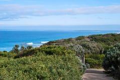 Seaside walk. Seaside brush / scrub by the sea / ocean. Walking path along the seaside. Barwon Heads walk, Victoria, Australia Royalty Free Stock Photo