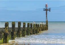 Seaside with wooden groyne going into sea Stock Photo