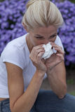 Season allergy Stock Images