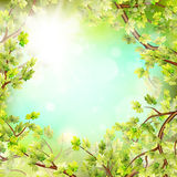 Season branches with fresh green leaves. EPS 10 Royalty Free Stock Photo