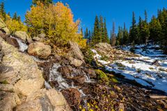 Season changing, first snow and autumn trees. Season changing, first snow and autumn aspen trees in  Rocky Mountain National Park, Colorado, USA Royalty Free Stock Images