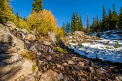 Season changing, first snow and autumn trees. Season changing, first snow and autumn aspen trees in  Rocky Mountain National Park, Colorado, USA Royalty Free Stock Photography