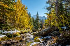 Season changing, first snow and autumn trees. Season changing, first snow and autumn aspen trees in  Rocky Mountain National Park, Colorado, USA Royalty Free Stock Photo