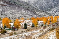 Season changing, first snow on roof. Season changing, first snow and autumn trees. Rocky Mountains, Colorado, USA Stock Image