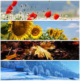 Season collage Stock Image
