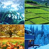 Season collage Royalty Free Stock Photography