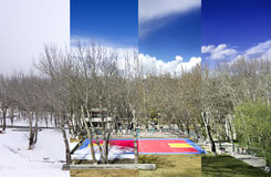 Season. The different view in different season Royalty Free Stock Photo