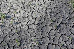 Season of drought Royalty Free Stock Image
