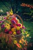 Season garden basket fruit gifts autumn royalty free stock photo