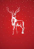 Season Greetings Royalty Free Stock Photos