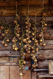 Season of harvest, plaited onions dried on a background of woode Royalty Free Stock Photography