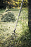 Season of hay Stock Photo