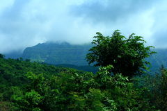 Season of monsoon Royalty Free Stock Image