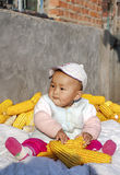 The season of result plays the baby of corn2. Harvest a seasonal changes to sit the baby who plays on the heap in the corn in autumn Royalty Free Stock Image