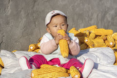 The season of result plays the baby of corn 3. Harvest a seasonal changes to sit the baby who plays on the heap in the corn in autumn Stock Photo