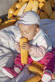 The season of result plays the baby of corn 4. Harvest a seasonal changes to sit the baby who plays on the heap in the corn in autumn Stock Images