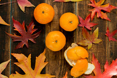 Season´s fruit Royalty Free Stock Photography